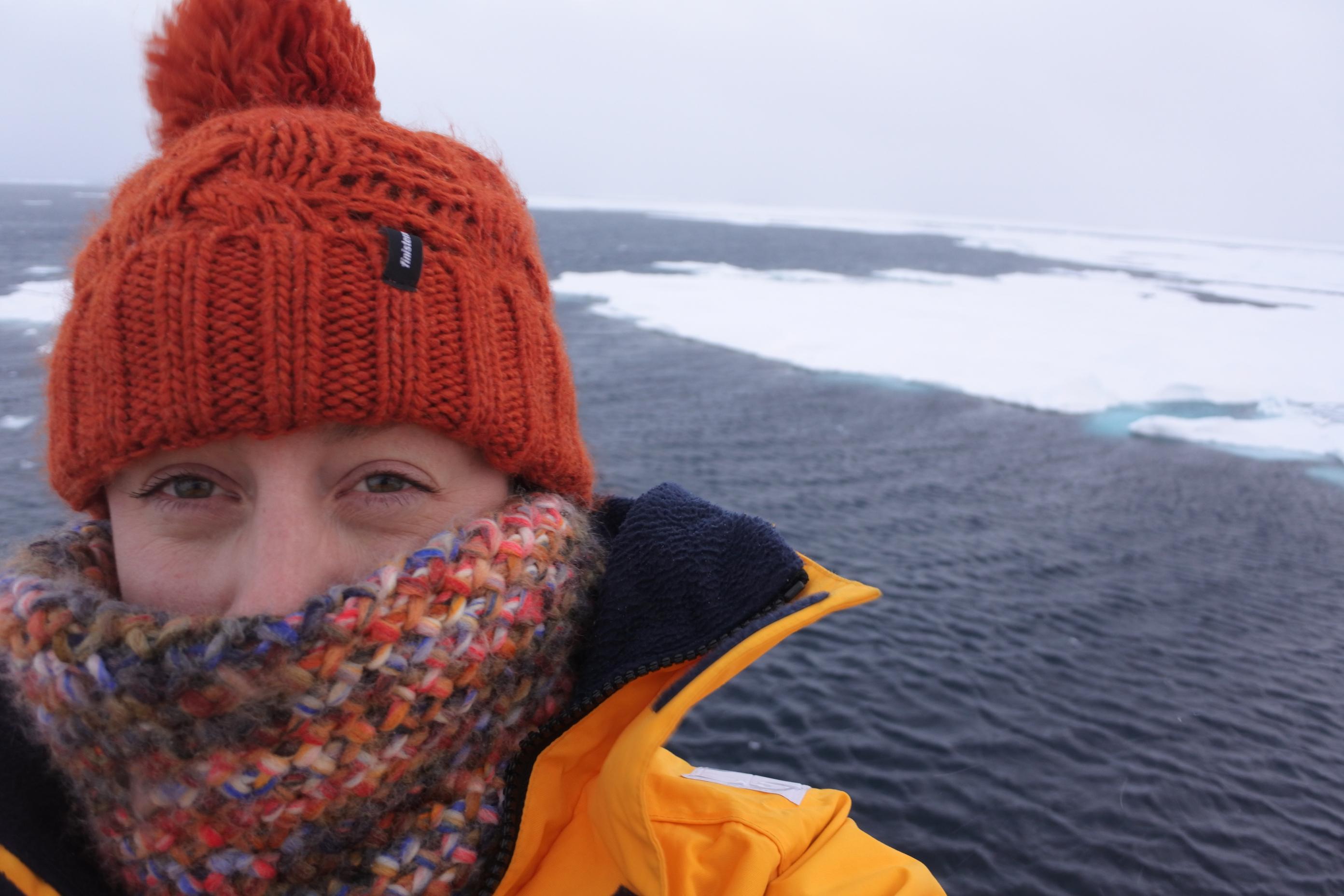 Chasing polar bears in the Arctic