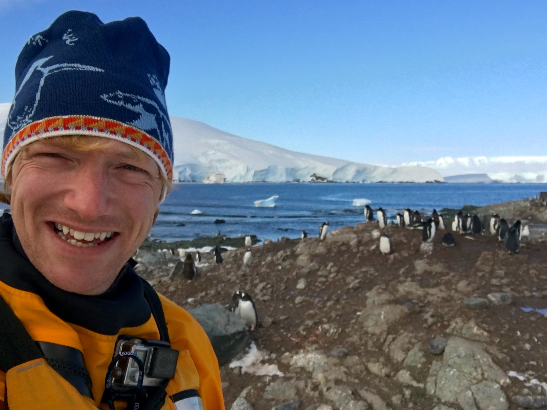 Which apps for Antarctica?