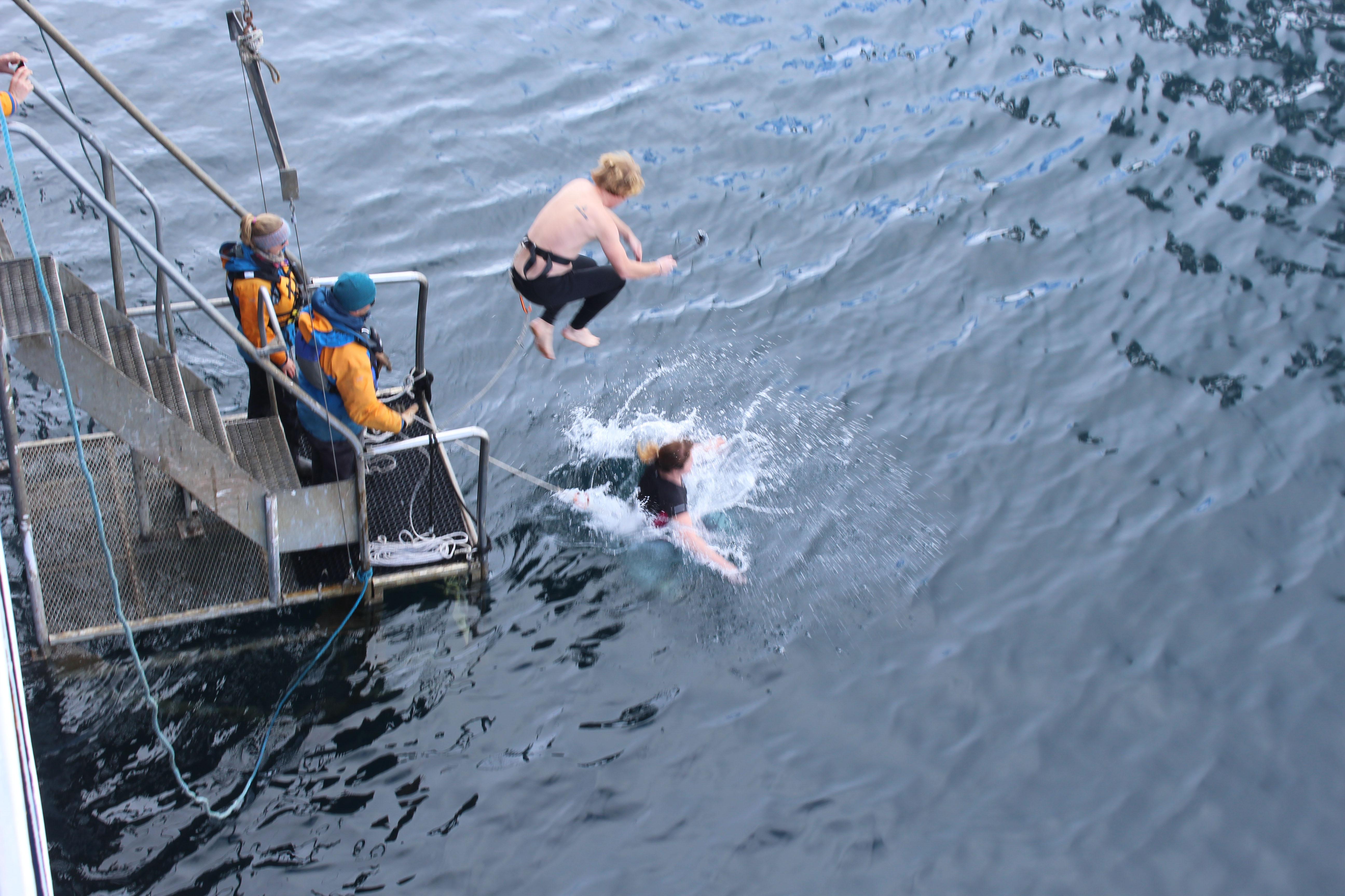 How to do a polar plunge