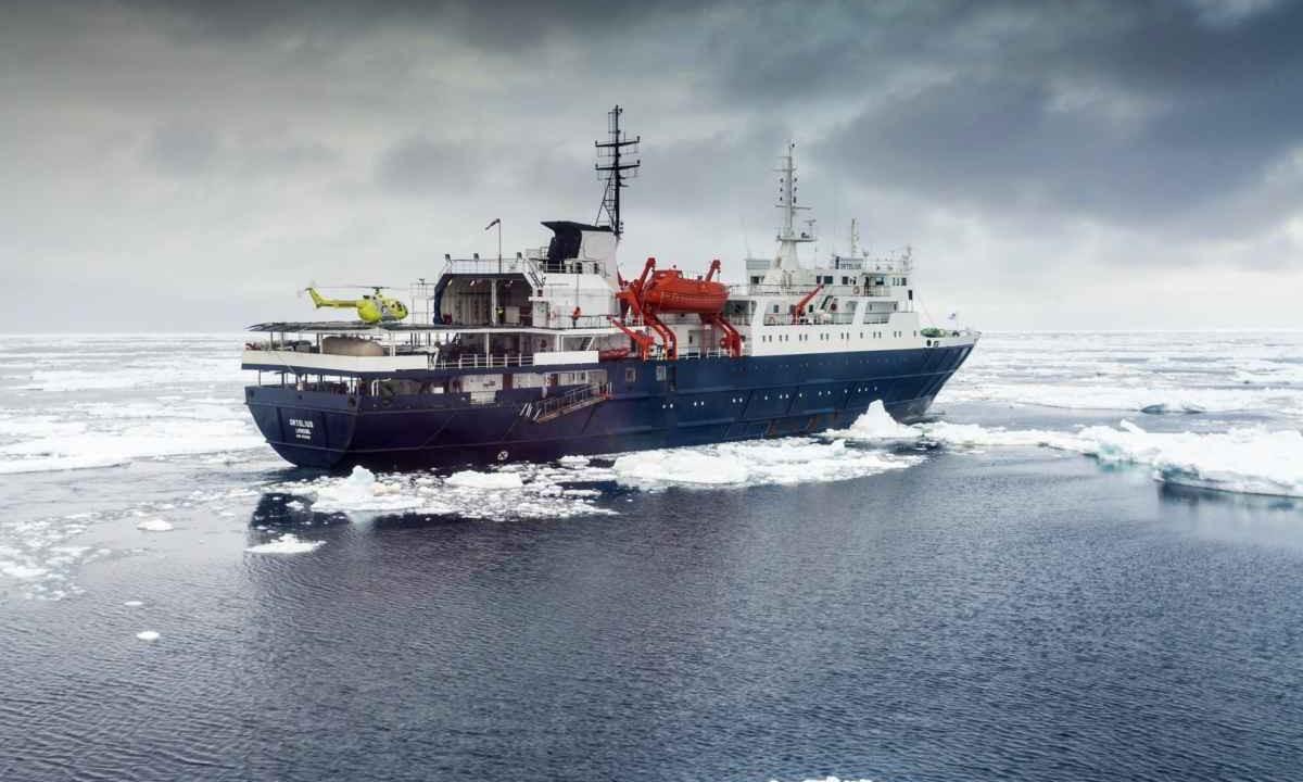 Ortelius  Antarctic Cruise Ship Reviews Amp Advice  Swoop