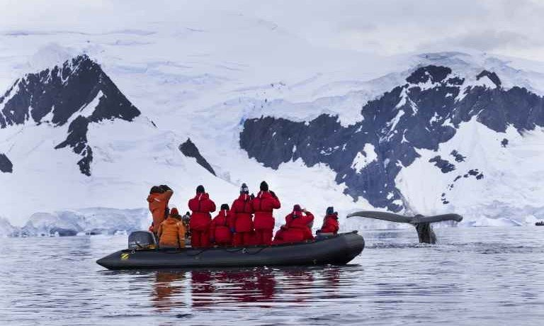 Antarctic Peninsula & Weddell Sea Explorer